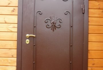 Стальная дверь с элементами ковки